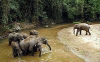 老挝旅游五日游线路